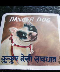 1324937078_Boston-Terrier-by-Ram-Badahur-1