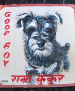 1324938681_Sport.Dog.Baba