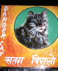 1325029640_Tabby-Cat-by-Sagar-1