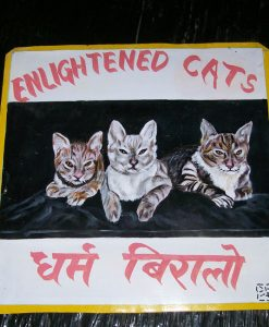 1325051312_Triple-Cats-by-Sagar-1