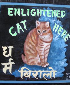 1325054946_Sagar-Ginger-Cat-Tony-1