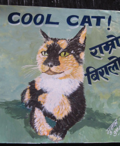 1325056110_Jit-Fisher-Cat-1