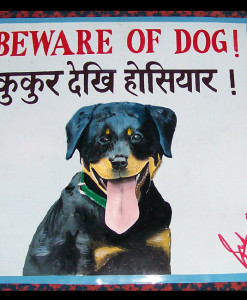 Folk art Beware of Rottweiler puppy hand painted on metal by a sign painter in Nepal