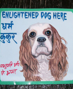 Folk art beware of Spaniel sign hand painted on metal by Nepali signboard artist