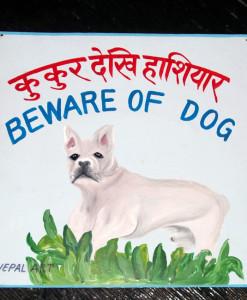 1328565293_NepalArtFrenchbulldog-3