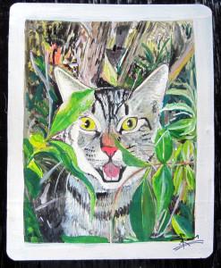 1350689151_Whiskers.InterestingCat.Sanjib.sq
