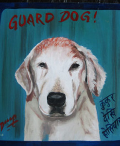 1370467950_Buzz.GoldenRetriever.Dilip