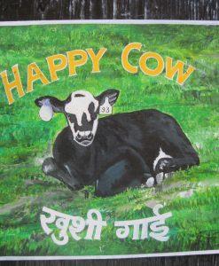 1387492995_cow