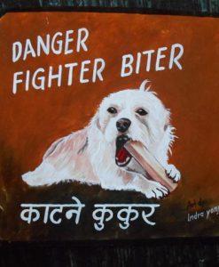 Folk art portrait of Casper the White Terrier Rescue dog hand painted on metal in Nepal