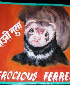 Clooney the Ferret hand painted on metal by Hari Prasad