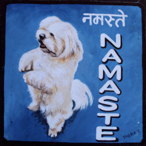 Lhasa Apso Dog by Indra Lama