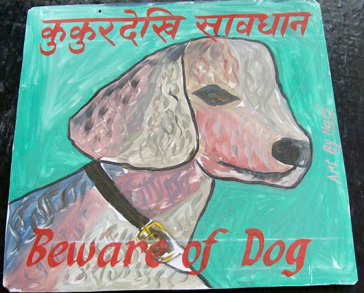 Folk art beware of white Poodle sign hand painted on metal by a sign painter from Kathmandu. The background is turquoise.