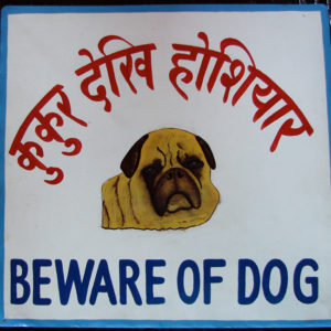 Folk art beware of pug sign hand painted on metal by a signboard artist in Nepal.