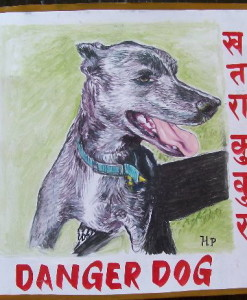 Folk art Hand painted portrait of a Pit Bull Terrier and Greyhound mixed breed dog on metal by a Nepali signboard artist.