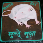 Folk art white Rat hand painted on metal by a sign board artist in Nepal