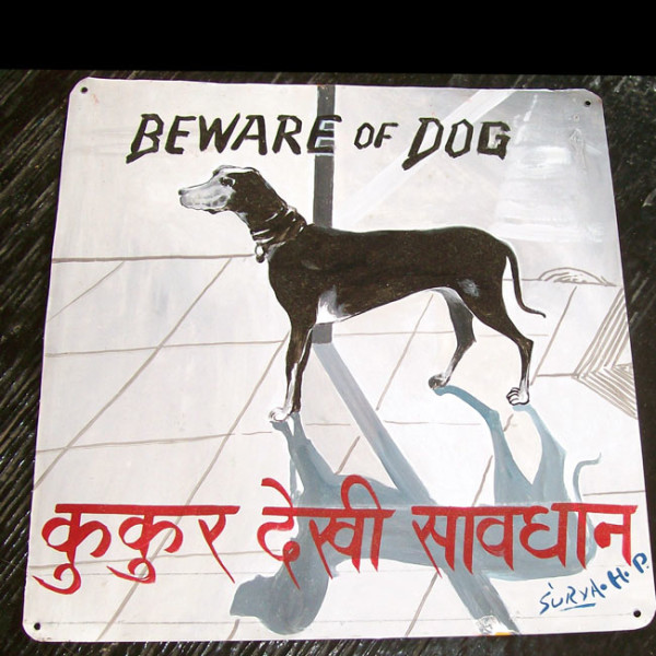 Folk art portrait of a Great Dane hand painted on metal by a sign painter in Nepal