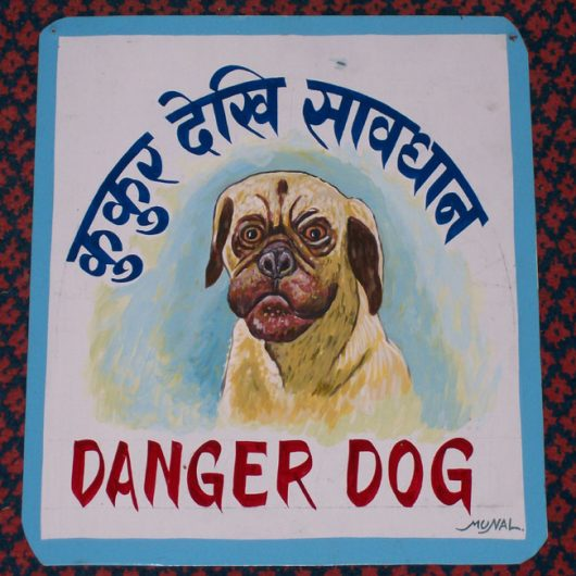 Folk art beware of pug sign hand painted on metal by a signboard artist in Nepal