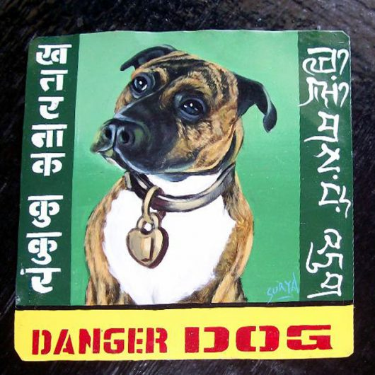 Folk art portrait of a pit bull (Beware of Dog sign) hand painted on metal by a Nepali signboard artist. I wish you could this one. It is truly beautiful.
