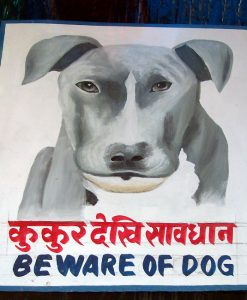 Outsider art version of a Folk art portrait of a pit bull (Beware of Dog sign) hand painted on metal by a Nepali signboard artist.