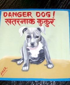 Folk art portrait of a pit bull (Beware of Dog sign) hand painted on metal by a Nepali signboard artist.