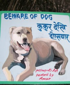 Folk art be aware of pit bull sign hand painted on metal by a signboard artist in Nepal.