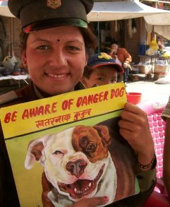 Pit bull portrait held by a female security guard at the Boudha Stupa in Kathmandu . Folk art be aware of pit bull sign hand painted on metal by a signboard artist in Nepal.