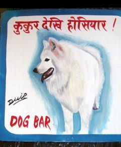 Samoyeds – Nepal Dog