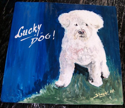 Folk art Enlightened Bichon Frise hand painted on metal by a signboard artist from Nepal