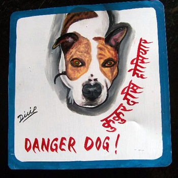 Hand painted portrait of a Pit Bull Terrier on metal by a Nepali signboard artist.