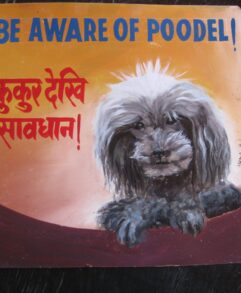 Folk art Beware of grey Poodle sign hand painted on metal by a sign painter in Nepal