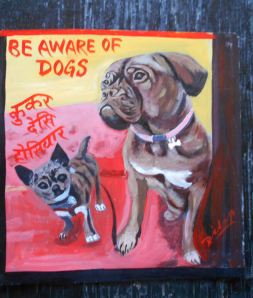 Ellis the Chihuahua and his Dogue de Bordeaux friend, Daisy by Dilip Niroj