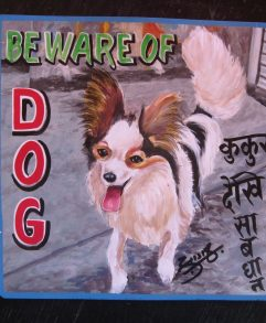 Folk art Beware of Papillion sign hand painted on metal by a sign painter in Nepal