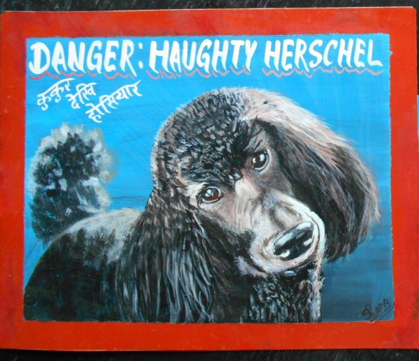 Beware of Black Standard Poodle