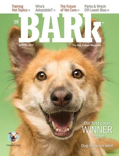 Bark-Magazine