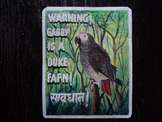 Folk art portrait of an African Grey Parrot