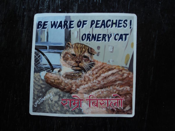 Folk art portrait of a ginger cat hand painted in Nepal